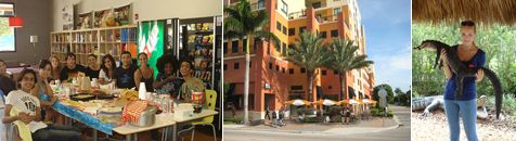 Angol nyelvtanulás Floridában